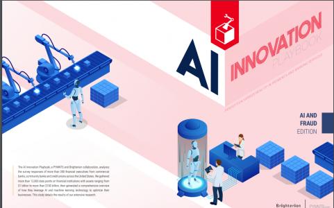 AI Innovation Playbook June 2019